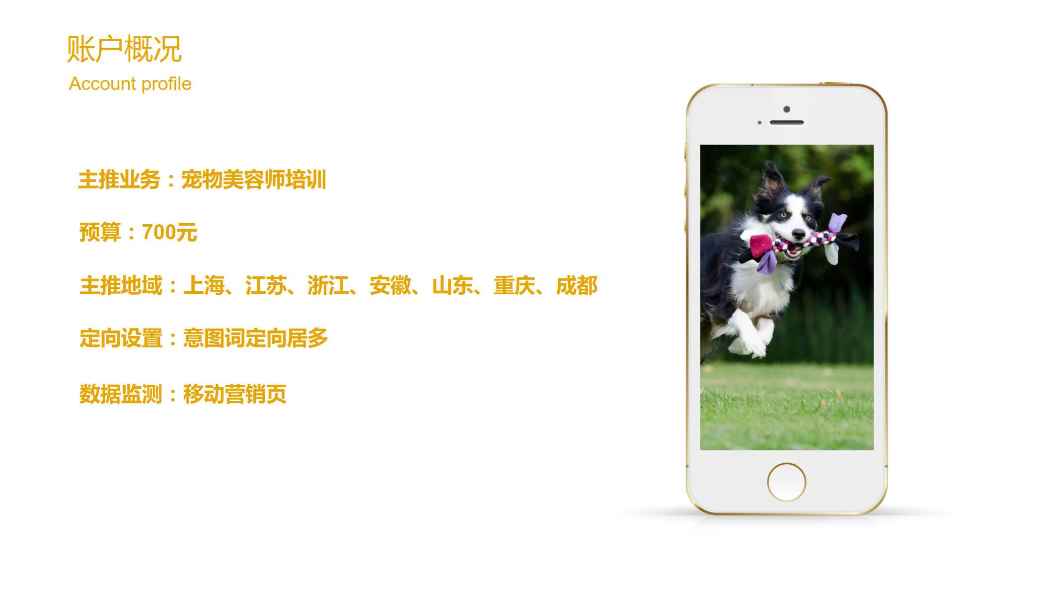 sh政轩-张燕惠_10.jpg