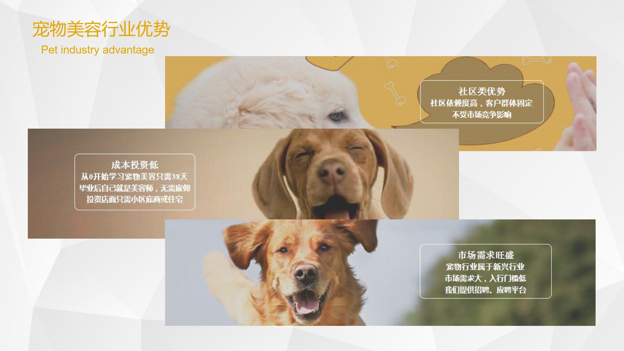 sh政轩-张燕惠_5.jpg